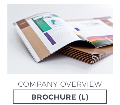 Company Overview Brochure Large